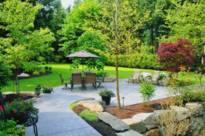 Visit American Native Plants for your next landscaping project.