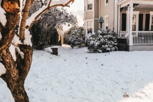 Is your landscape prepared for the winter chill?