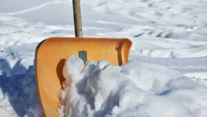 Careful not to damage your grass or plants while shoveling snow